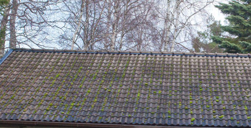 Kontrollera ditt tak - Takvård
